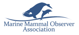 Marine Mammal Observer Association